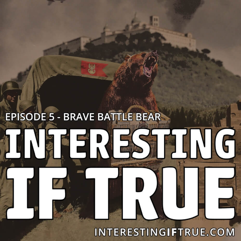 Episode 5: Brave Battle Bear!