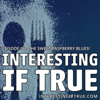 Episode 16 – The Sweet Raspberry Blues!